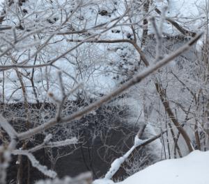 鈴森の湯では雪見風呂が楽しめます